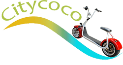 Citycoco Scooter electrique