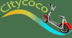 Citycoco Scooter electrique